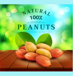Peanut kernels with green leaves design element vector