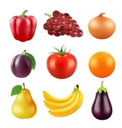 realistic pictures of fresh fruits and vector image