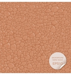 Seamless background leather texture vector image