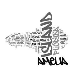 amelia island condo rentals text word cloud vector image vector image