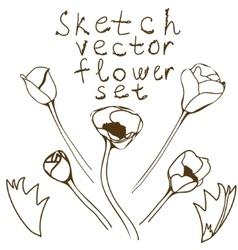 Flower setdetailed hand drawn anemones vector