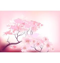 Sakura spring cherry tree vector image
