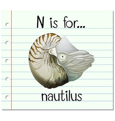 Flashcard alphabet n is for nautilus vector