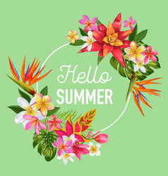 Hello summer design tropical hibiscus flowers vector