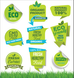 set organic fresh natural and tasty food vector image