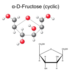 Structural chemical formula and model of fructose vector image