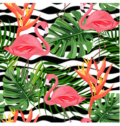 Tropical background with exotic plants vector