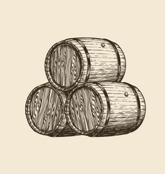 Wine cellar winery wooden barrels with wine vector