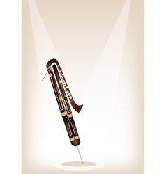 A Classical Contrabassoon on Brown Stage vector image vector image