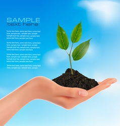 young plant in hand vector image