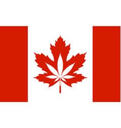 legalization cannabis hemp on canada flag vector image