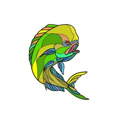 Mahi-mahi dorado dolphin fish drawing vector