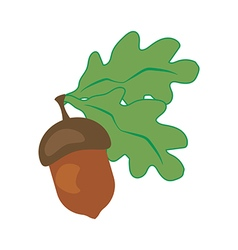 Oak leaf and acorn vector image