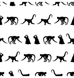 monkey black shadows silhouette in lines pattern vector image