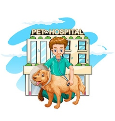 Vet giving treatment to dog vector image vector image