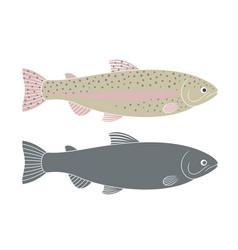 Rainbow trout vector