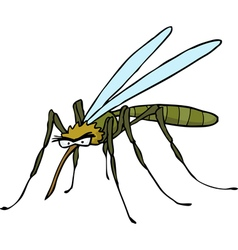 mosquito doodle vector image vector image