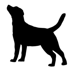 dog labrador retriever breed silhouette vector image