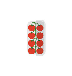 isolated love apple flat icon tomato vector image