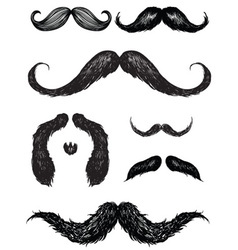 hand drawn mustache set vector image vector image