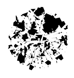 Abstract Black Explosion on White Background vector image