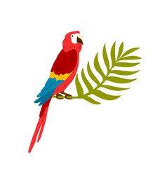 exotic tropical ara bird macaw big red parrot vector image