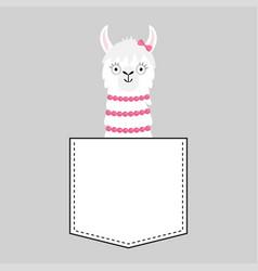 Llama alpaca face head in pocket pink bow vector