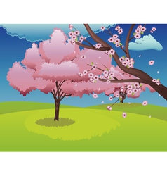 Sakura on grass field vector