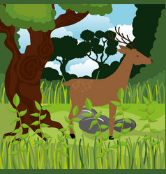 Wild reindeer in the jungle scene vector