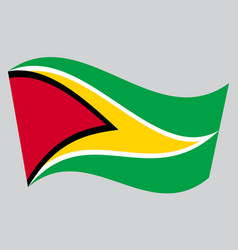 flag of guyana waving on gray background vector image