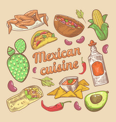 mexican cuisine traditional food hand drawn doodle vector image