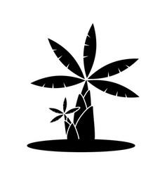 banana tree icon vector image vector image