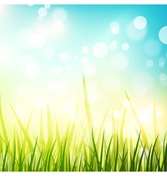 Natural Spring or Summer Sunny Background vector image vector image