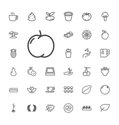 33 leaf icons vector