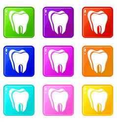Canine tooth icons set 9 color collection vector