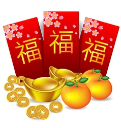 Chinese new year red packet vector image