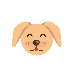 cute face dog animal cheerful vector image