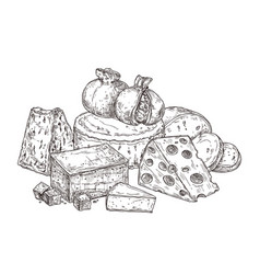 Drawing cheese sketch ingredients vintage dairy vector
