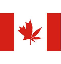 Legalization cannabis hemp on canada flag vector