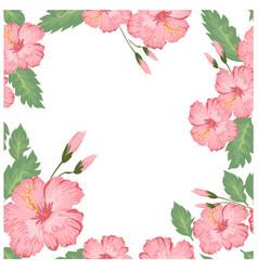 seamless beautiful pink hibiscus pattern vector image