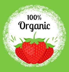 strawberry organic banner vector image