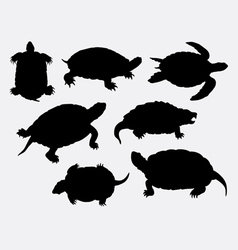 Turtle tortoise amphibian rare animal silhouette vector
