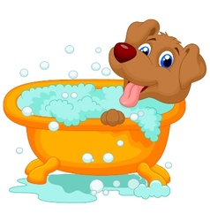 Cartoon Dog bathing time vector image vector image