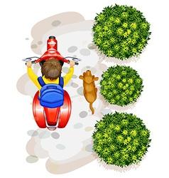 A topview of a boy riding a motorcyle vector image vector image