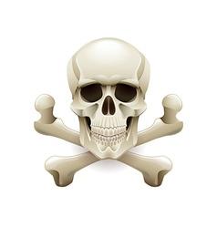 Skull crossbones isolated on white vector