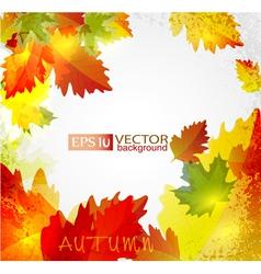 Autumn2 vs vector
