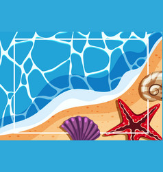 Border template with shells on the beach vector