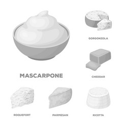 Different kind of cheese monochrome icons in set vector