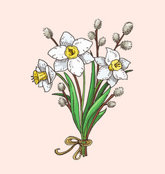 Hand drawn narcissus and willow branches bouqet vector
