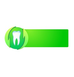 healthy teeth on green banner vector image
